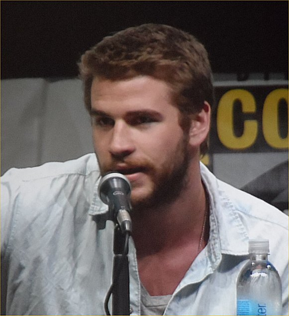 Hunger Games, Catching Fire, Hunger Games: Catching Fire, Comic-Con 2013, Liam Hemsworth