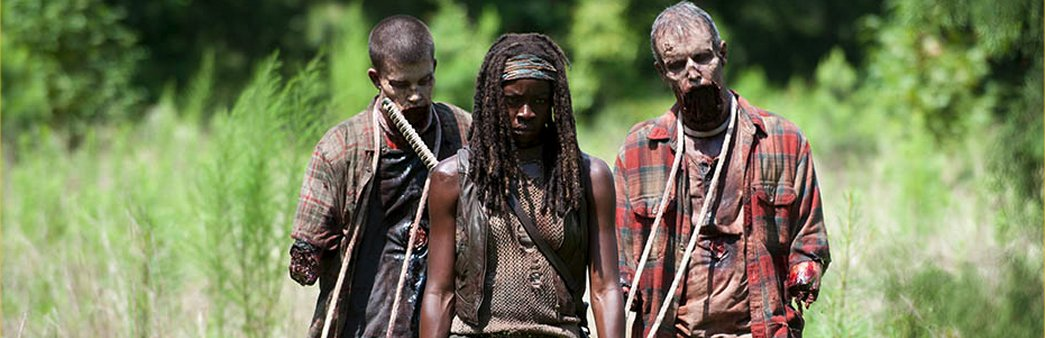 The Walking Dead, Season 4 Episode 9, After, Michonne