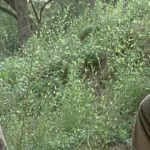 The Walking Dead Episode Recap, Season 4 Episode 15: Us