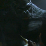 The Flash Episode Recap: Season 1 Episode 21 – Grodd Lives