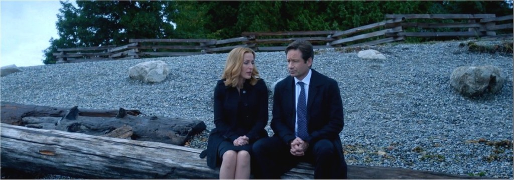 The X-Files, Season 10 Episode 4, Home Again, Dana Scully, Fox Mulder